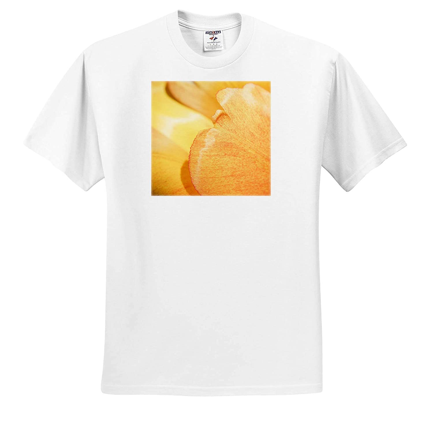 T-Shirts Flowers Tulips Macro View of Tender Yellow and Orange Tulip Flower Petals 3dRose Alexis Photography