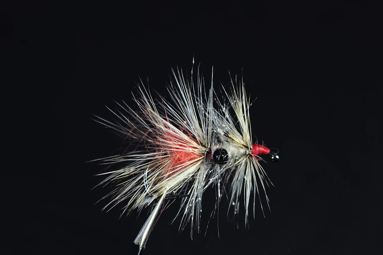 Tigofly Grizzly Garnelen Vaskebj/ørn Hackled Fly Sea Forelle Fliegenfischen Fliegen K/öder Gr/ö/ße 2# 4# 6# 12 St/ück