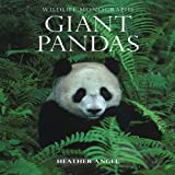 Giant Pandas, Heather Angel, 1901268136