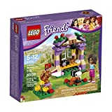 Best LEGO Camping Toys - LEGO Friends Andrea's Mountain Hut 41031 Building Set Review