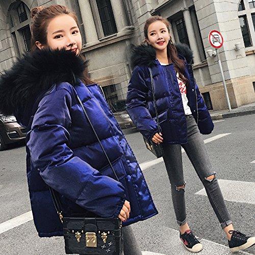 Xuanku Das Haar Für Einen Kurzen Absatz Baumwolle Mantel Weiblichen Lässig Entspannt Winter Gold Velvet Weibchen Große Werften Jacke Lockere Baumwollkleidung B076HN7YLX Jacken Verbraucher zuerst