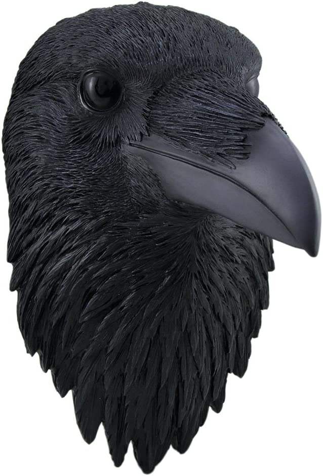 Zeckos Edgar Larger Than Life Black Raven Head Wall Hanging