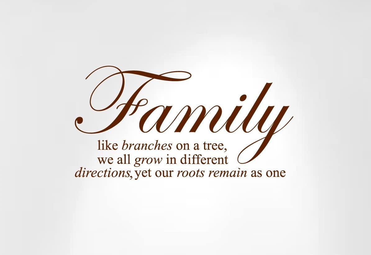 Innovative Stencils 1134 24 mbrown Family Like Branches on a Tree Wall Decal Sticker Quote, 24 and 34-Inch Wide by 12 and 34-Inch High, Matte Brown