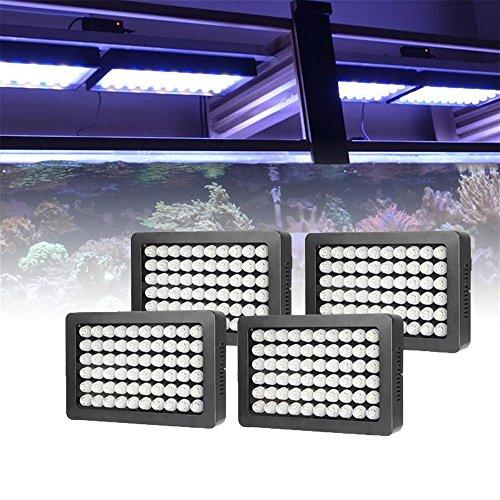Turtle Tank Led Lighting - 5