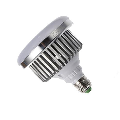 LED E27 bombilla para estudio de fotografía (65 W, 5500 K), sin parpadeos, de luz, para Photo Studio y famoso en línea para uso para retrato y ...