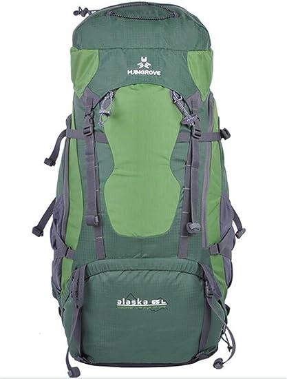 mochilas montaña Unisex bolsos de montaña profesionales 65L mochila bandolera mochila Mochilas de marcha (Color