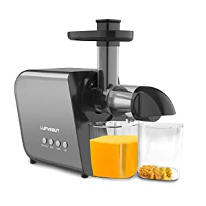Cold Press Slow Juicer Extractor
