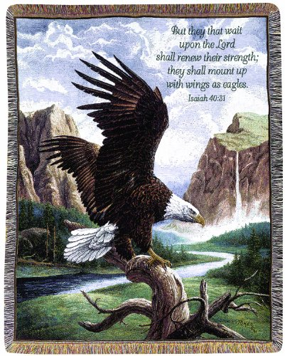 Manual Inspirational Collection 50 x 60-Inch Tapestry Throw with Verse, Freedom by Linda Pickens, - Eagle Tapestry