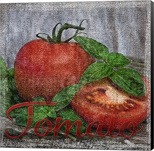 Vintage Tomatoes by Andrea Haase Canvas Art Wall Picture,