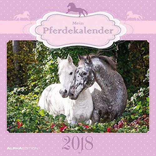 Mein Pferdekalender 2018 - Broschürenkalender (30 x 60 geöffnet) - Tierkalender - Wandplaner