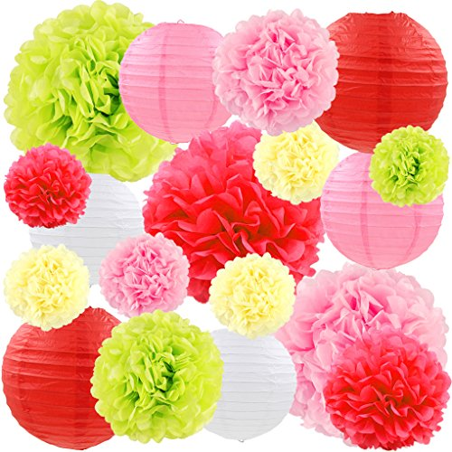 Wedding Red Pink Flowers (Red Pink Paper Lanterns Decorative Hanging Tissue Paper Pom Pom Flowers Wedding Engagement Party Decorations for Wall, 18 pcs)