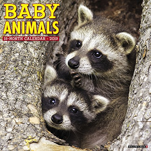 Baby Animals 2019 Wall Calendar