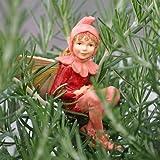 Miniature Fairy Garden Red Campion Fairy