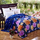 Bedding Extra Soft Coral Fleece Blanket Lightweight Thickening Throw/Bed Blanket Color Blanket Blue King(91''X99'')