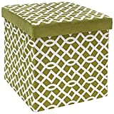 Cheap The FHE Group Microsuede Folding Storage Ottoman, 15 by 15 by 15 Inches, Apple Green and White