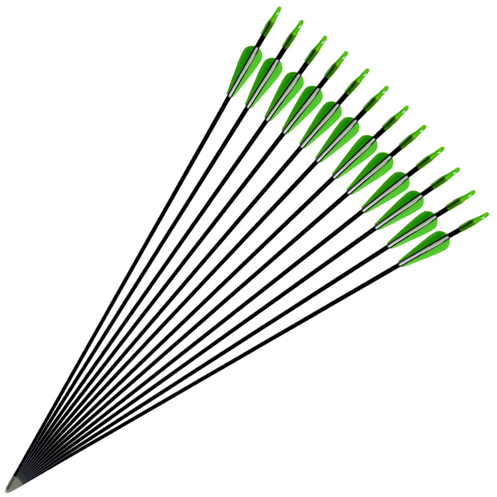 12 Flechas Milaem Flechas de Fibra de Vidrio Flecha de orientaci/ón de 31 Pulgadas para Practicar Tiro con Arco Flecha Fija Punta 800 Spine