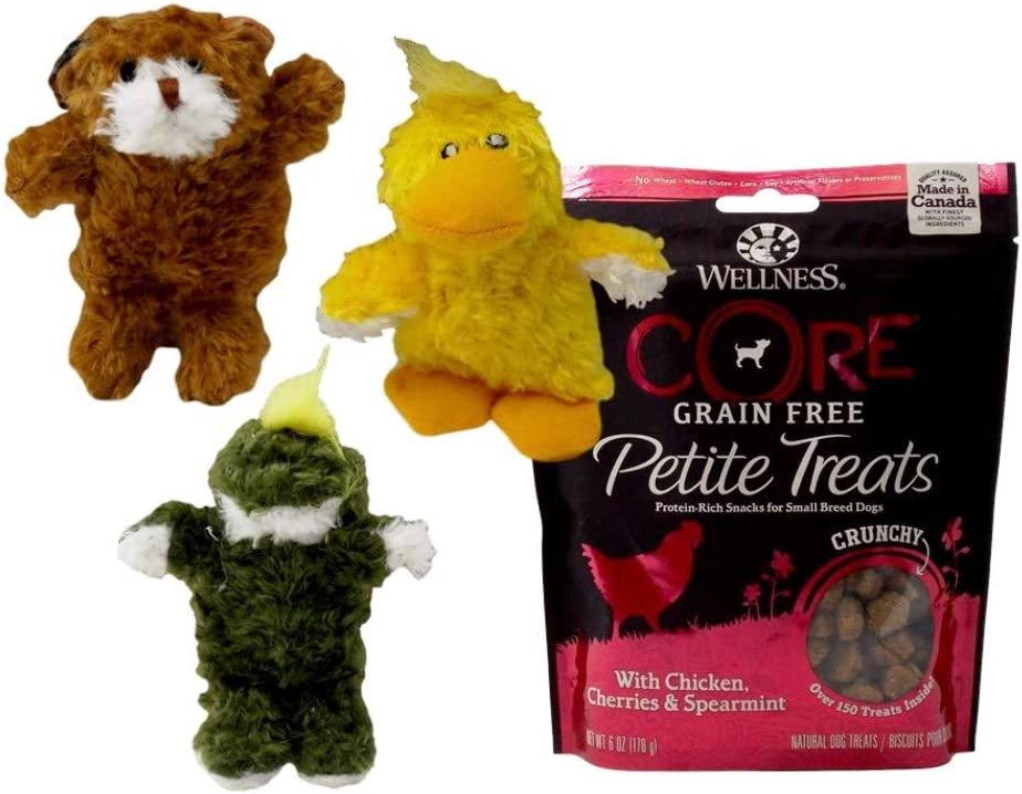 Kong Low Stuffing Extra Small Squeaker Toy 3 Shape with Wellness Core Grain Free Treats Bundle (6 Ounces)