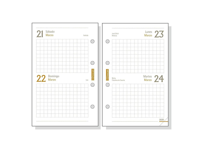 Amazon.com: Finocam – Agenda 2020 2 días página cuero ...