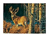 HADLEY HOUSE Alberta Gold by Des Mccaffrey Decorative Wood Wall Plaque, 18x24