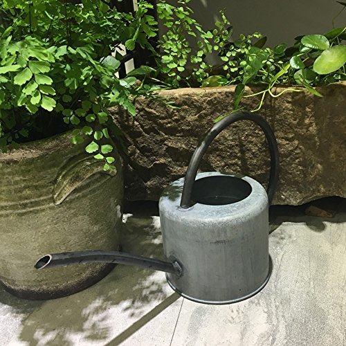Calunce rustic retro textured gardening tools long spout watering can(Old zinc color) (Reach Spout)