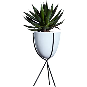 Amazon Com Modern Metal Cube Frame Planter Bowl