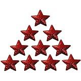 Toruiwa 10X Parches para Ropa Parches termoadhesivos Pegatinas de paño Bordado de Tela Parches de decoración