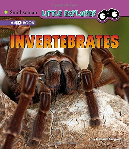 Invertebrates: A 4D Book (Little Zoologist)