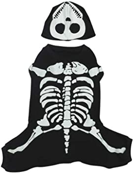 Casual Canine Glowing Skeleton Pet Costume