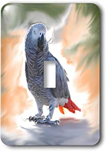 3dRose lsp_4030_1 African Grey Parrot Single Toggle Switch