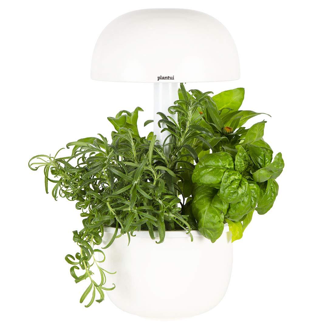 PLANTUI sg3e-w Smart Garden, weiß, 19x 19x 37cm