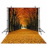 Funnytree 5x7ft Maple Leaves Photography Backdrop Autumn Fallen Yellow Tunnel Scenery Natural Season Background Fall Tree Street Road Photo Studio Props Photobooth Poster Photoshoot