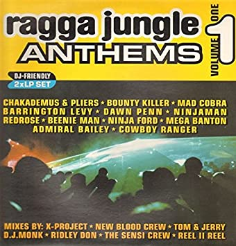 I-Space : Ragga Jungle Anthems Vol.1: Amazon.es: Música