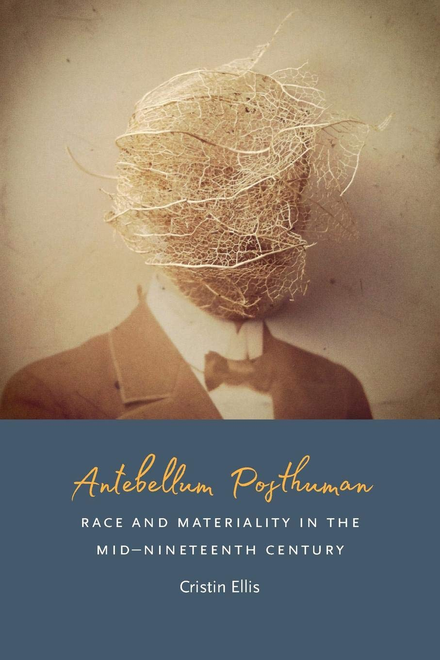 Antebellum Posthuman: Race and Materiality in the Mid-Nineteenth ...