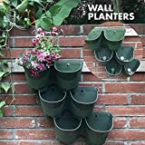 Worth Garden SELF Watering Vertical Wall Hangers with Pots -Each Wall Mounted Hanging Pot has 2 Pockets – 6 Total Pockets in This Set – Outdoor Self Watering Planter Set Review