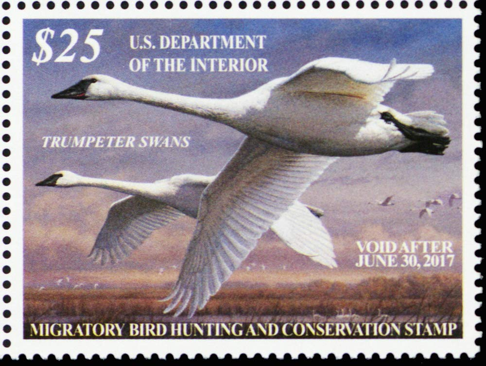 2016 Trumpeter Swans Federal Duck Stamp Mint VF Never Hinged Scott RW83