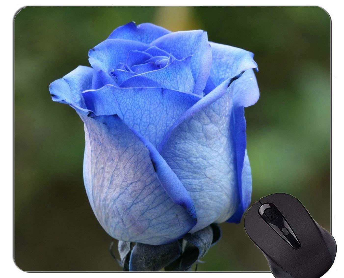 Yanteng Cojín de ratón del rectángulo, Flores Encantadoras ...