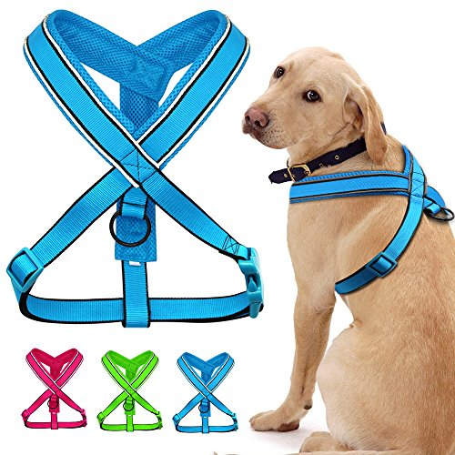 Didog Soft Padded Reflective Dog Harness for Medium and Large Dogs,Y-front Harness for Bulldog Doberman German (Connect Harness)