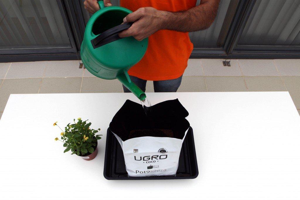 Sustrato Ladrillo Fibra coco deshidratado U-Gro Pot9 Rhiza 900g-9L Bloque