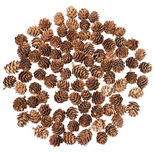 Cooraby 100 Pieces Mini Natural Pine Cones Christmas Natural Pine Cones Ornaments for Home Decoration, Fall and Christmas Crafts