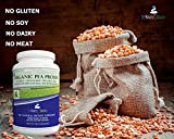 3-lb-Ultra-Premium-Organic-Pea-Protein-Powder-USDA-Certified-ONLY-from-USA-and-Canada-Grown-Peas-No-GMO-Soy-or-Gluten-Vegan-Full-Spectrum-Amino-Acids-BCAA-More-Protein-than-Whey-80-Protein
