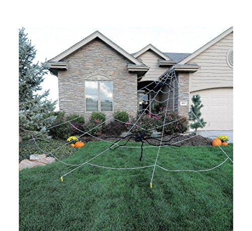 Giant Spider Web Yard -