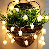 LOHOME Pine Cone String Light String Lights - 6.5ft 20 LED String Fairy Decorative Lights for Home, Garden, Patio, Yard, Christmas Tree, Parties (6.5ft)