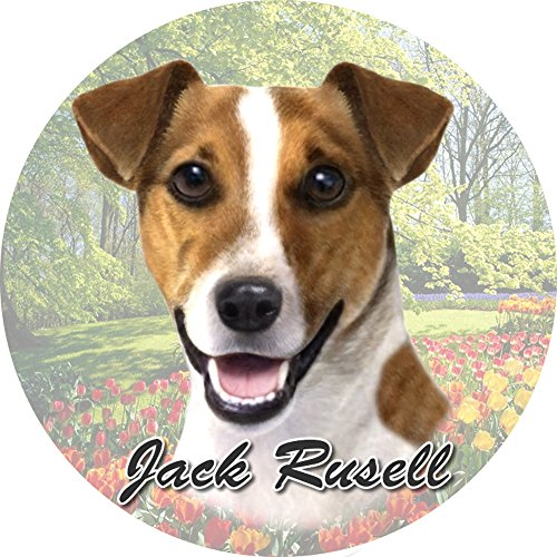 E&S Pets Jack Russell Coaster, 3″ x 3″