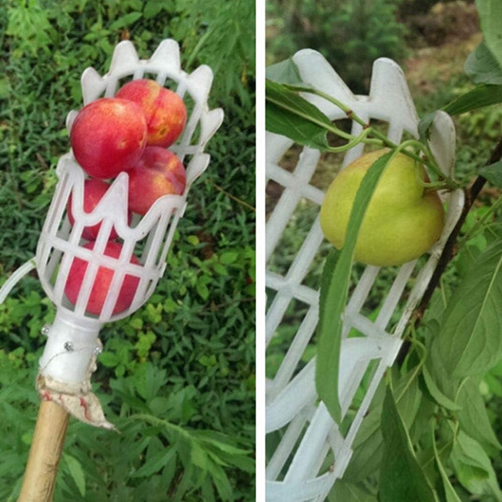 Isincer Raccoglitore di Frutta,Horticultural Fruit Picker Head Gardening Picking Durable Tools,Fruit Picker raccogli Frutta,Pratico Cesto di Raccolta per La Raccolta di Frutta