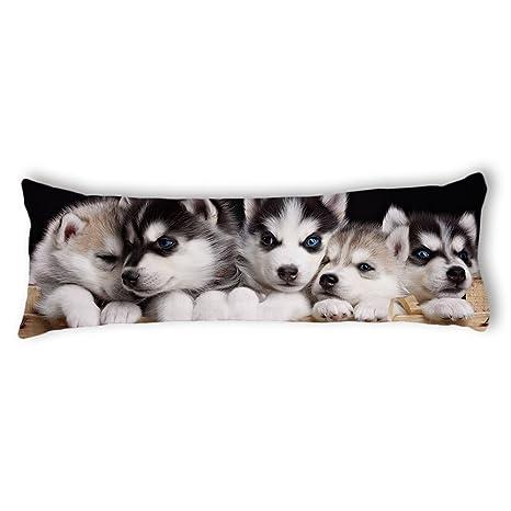 Amazon.com: ailovyo perro Hermanos Funda Cuerpo sedoso ...