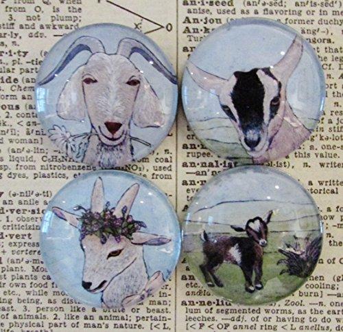 Magnet Set of Four Goats - Farmhouse Decor - Original Art - Handcrafted Glass Magnet - Rare Earth Magnet