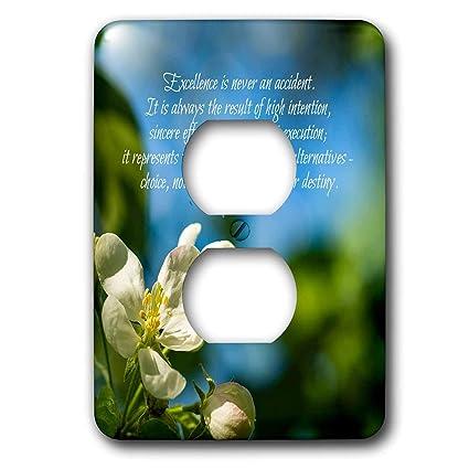 3dRose Alexis Design - Quotes Inspirational - Aristotle ...
