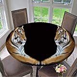 Mikihome Round Table Tablecloth Twin Beautiful Tiger face to face Isolated on Black Background for Wedding Restaurant Party 43.5''-47.5'' Round (Elastic Edge)
