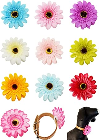 JpGdn Dog Flower Collar Charms Slides Accessories for Female Girls Small Medium Dogs Cat Puppy Bowknot Grooming Decoration Pack of 6 in Mixed Color