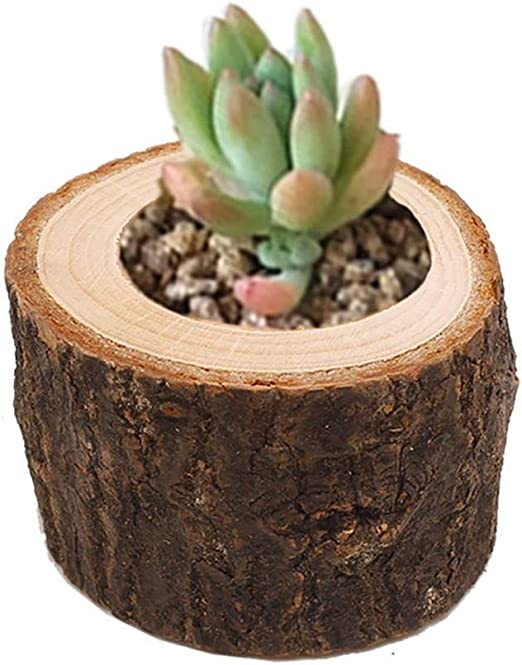 Amazon Com Eshoo 1 Piece Succulent Plants Creative Flower Planter